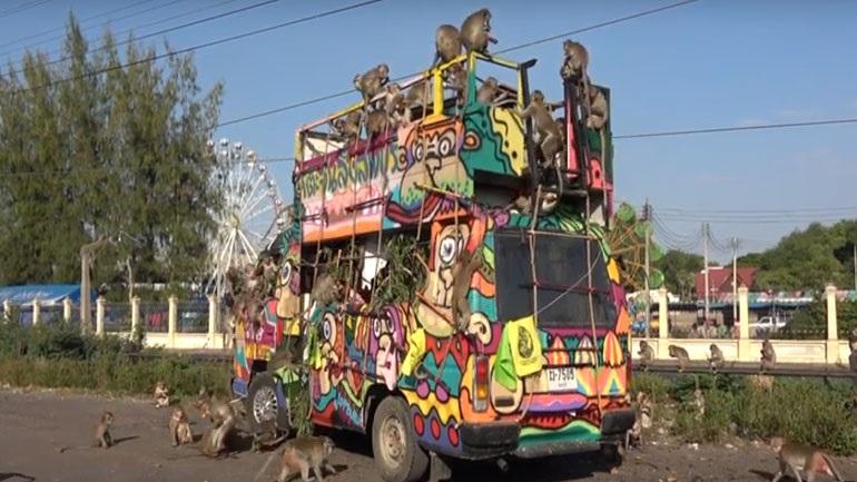 Ταϊλάνδη: Εκατοντάδες μαϊμούδες κάνουν... έφοδο σε φορτηγό τροφίμων